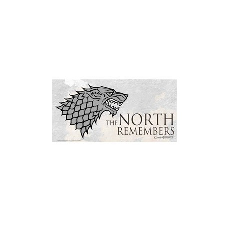 Juego de tronos Póster de Vidrio The North Remembers 50 x 25 cm