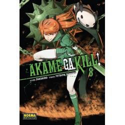 Akame Ga Kill 08