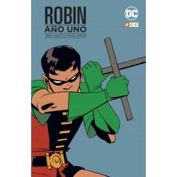 Robin: Año Uno