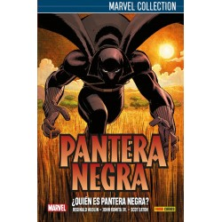 Marvel Collection. Pantera Negra de Hudlin 01