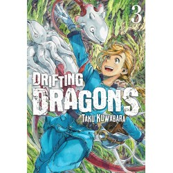 Drifting Dragons 03