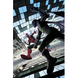 Amistoso Vecino Spiderman 04