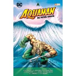 Aquaman de Peter David vol. 01 (de 3)